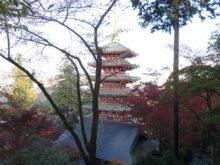 僧侶と巡る「高幡不動尊 参拝の旅」12
