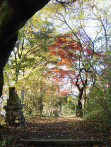 僧侶と巡る「高幡不動尊 参拝の旅」8