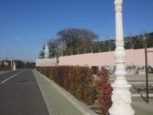 釈迦寺霊園樹木入替3