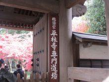 僧侶と巡る「喜多院と平林寺参拝の旅」1