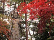 僧侶と巡る「喜多院と平林寺参拝の旅」5