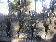 僧侶と巡る「喜多院と平林寺参拝の旅」13