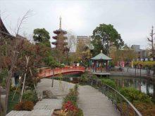 僧侶と巡る「川崎大師と紅葉の高倉観音の旅」6