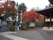 僧侶と巡る「川崎大師と紅葉の高倉観音の旅」13