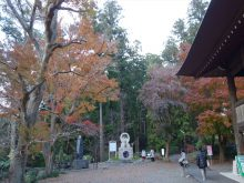 僧侶と巡る「川崎大師と紅葉の高倉観音の旅」14