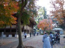 僧侶と巡る「川崎大師と紅葉の高倉観音の旅」15