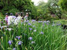 僧侶と巡る「遊行寺と江の島弁財天 参拝の旅」6